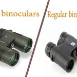 hd binoculars vs regular binoculars – which is the best