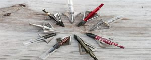 Best Fixed Blade Broadhead For Elk