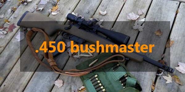 hunting with .450 bushmaster